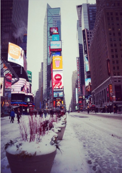cold nyc